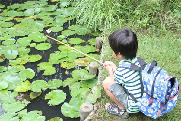 ザリガニ釣りをする子供