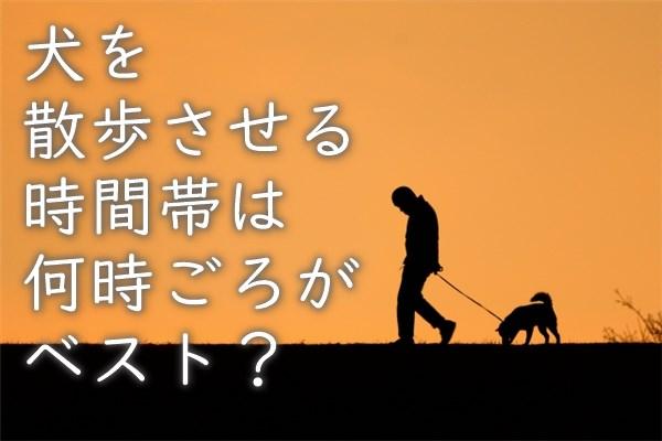 犬を散歩させる時間帯は、何時ごろがベスト?