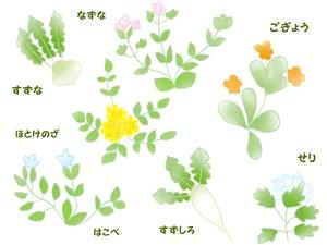 春の七草全種類