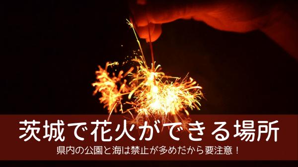 茨城で花火ができる場所13選!県内の公園と海は禁止が多め