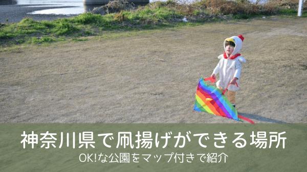 凧揚げできる場所【神奈川県】OKな公園をマップ付きで紹介