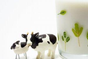 牛の置物とコップの牛乳