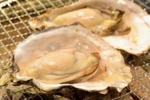網焼きにした牡蠣