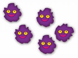 ピロリ菌の想像図