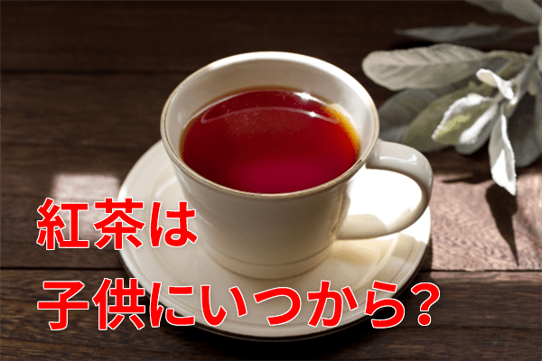 紅茶は子供にいつから?
