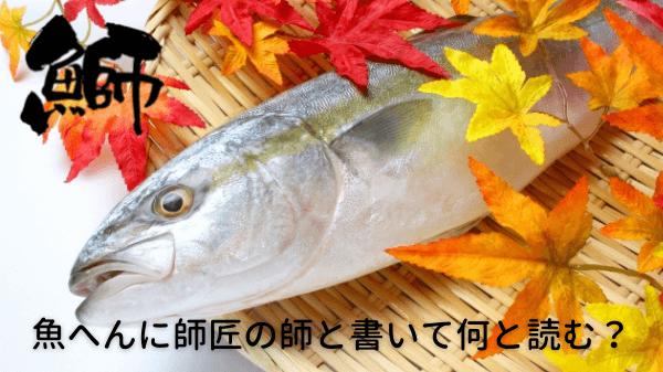 魚へんに師匠の師と書いて何と読む?鰤になった4つの由来!