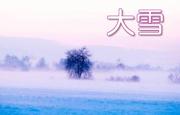 雪原の風景