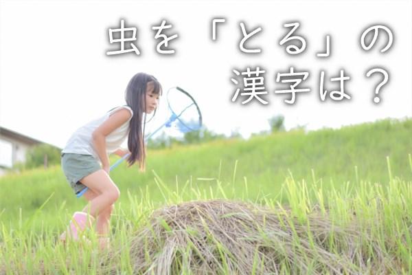 虫を「とる」の漢字は?