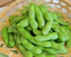 ザルに載せた枝豆